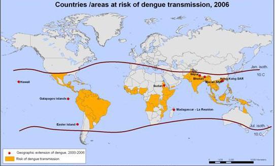 Dengue Fever WHO2006