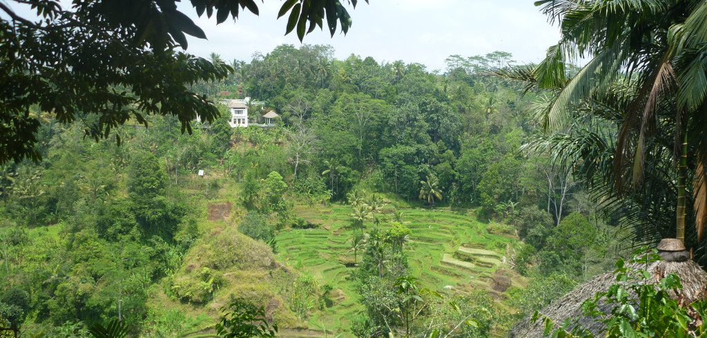 Bali Lombok Flores (Indonesien)   Reise Medizin